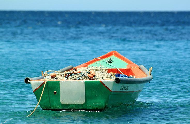 trasformazione prodotti della pesca: bando Regione Lazio